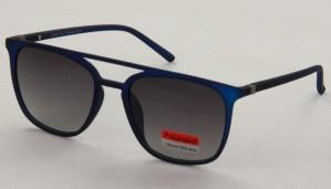 Okulary przeciwsłoneczne Polar View PV4600B